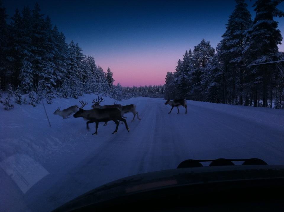 N Letter Love Northern Sweden in Win...