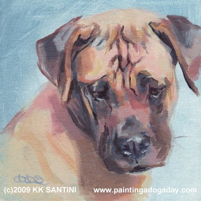 gentle giant i boerboel pet portrait dog painting c4in100