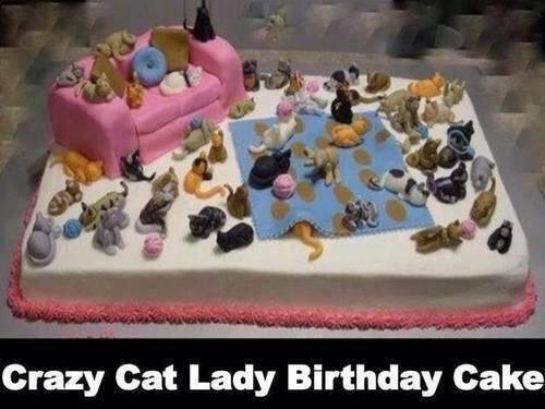 Crazy Cat Lady Cakes (1/6)