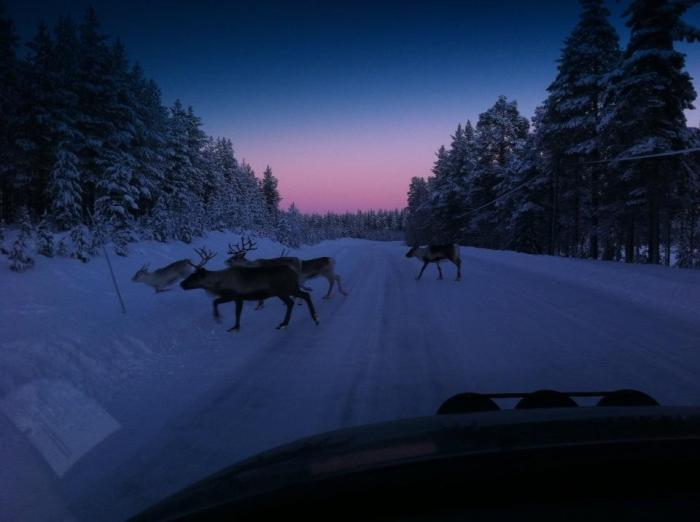 This photo taken at exactly midday in the middle of winter by Isak From