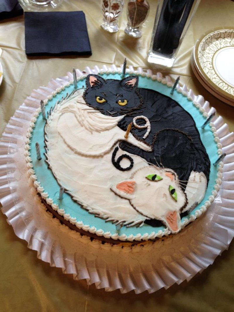 Cat Cakes Janet Carr