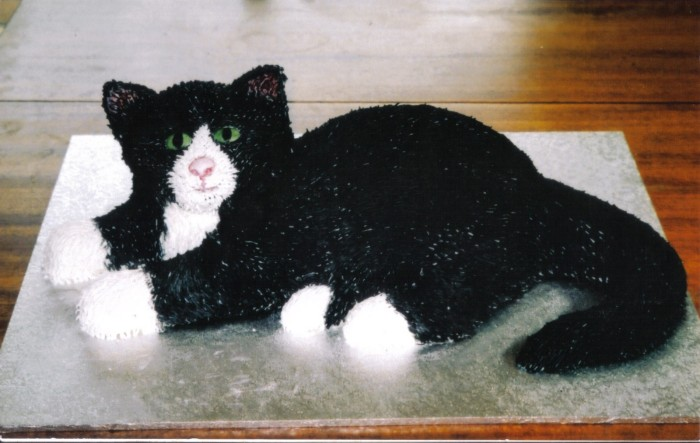 Black-And-White-Novelty-Cat-Birthday-Cake-Sponge-Poole-Dorset-1600x1014