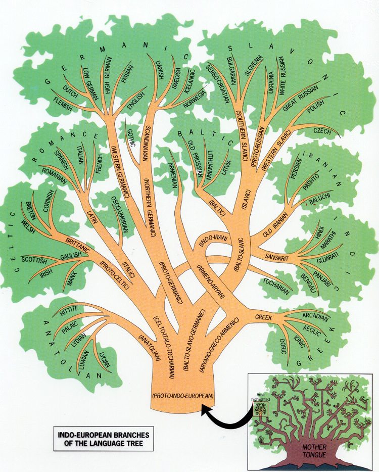 The Indo European And Finno Ugric Language Trees Janet Carr