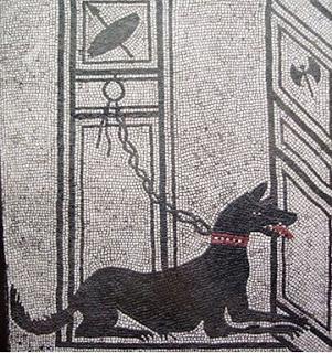 Mastiff Mozaik