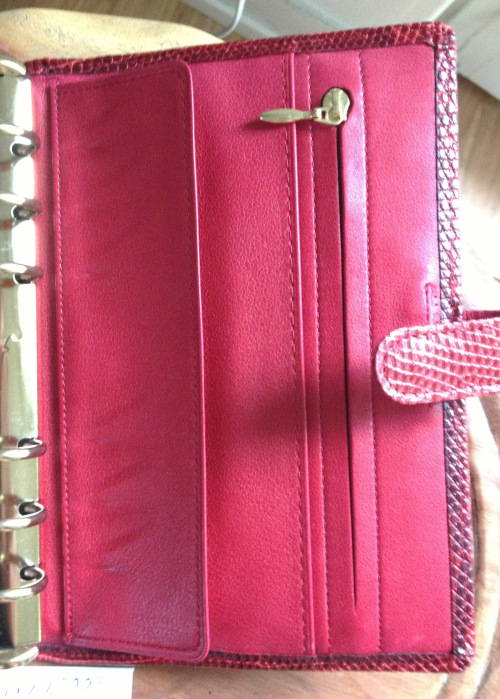 Gold zipper pull on Filofax Lizard. The rings look silver there because of the light but they are gold