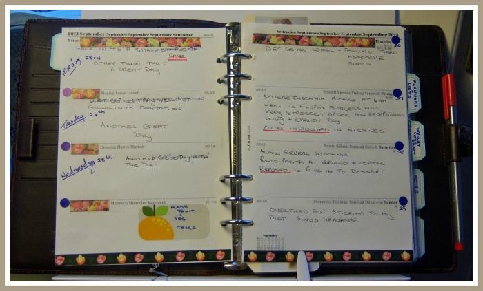 2 My Diary.jpg