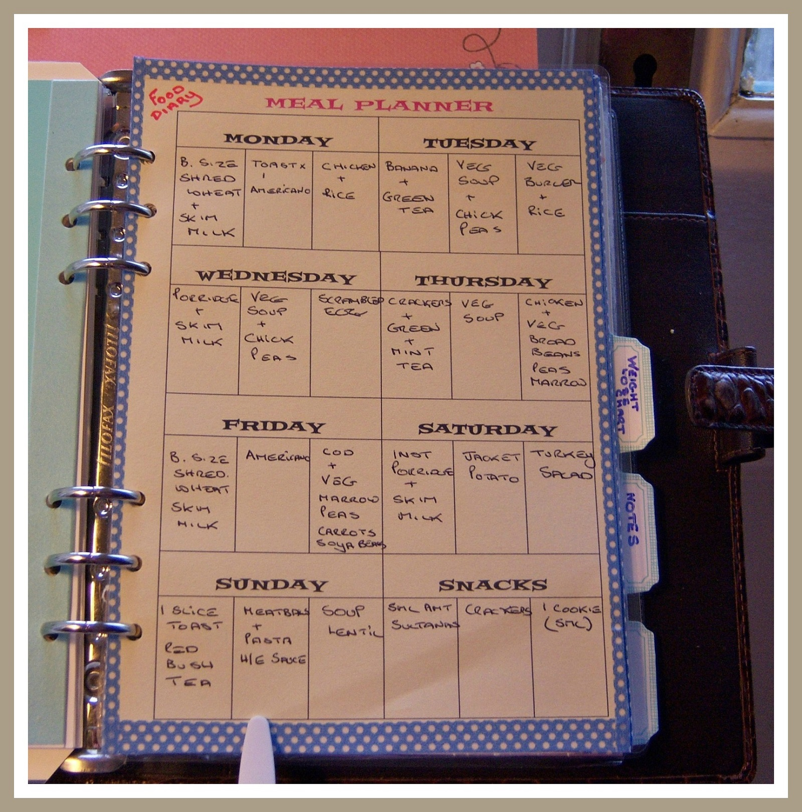 Using a ring organiser to lose weight – Part 4 – Janet Carr @