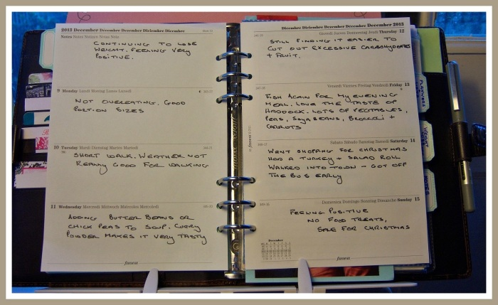(6) My Diary Week