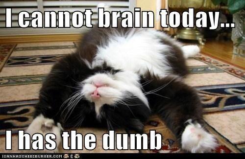Image result for mushy brain meme