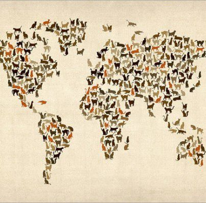 international-cat-day-map