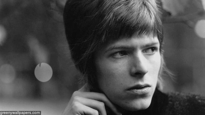 192361-david-bowie-young-davy-wallpapers-1920x1080