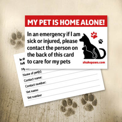home-alone-pet-safety-card-image-red-388