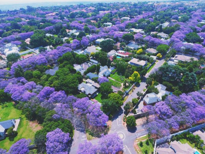 Johannesburg, taken a few days ago by Matthew Mole
