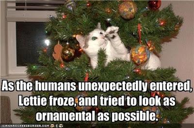 christmastreecat