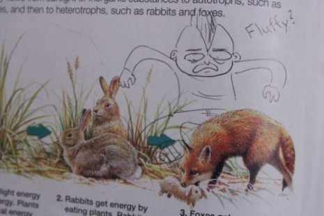 funny-textbook-doodles-5_465_310_int