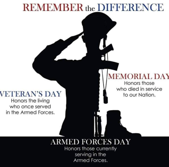The difference between Memorial Day, Veteran's Day and ...